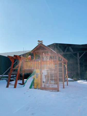 Детская площадка Савушка Baby play 2 фото