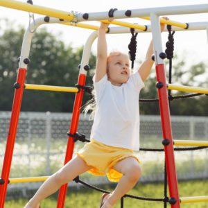 Детский спортивный комплекс для дачи ROMANA Богатырь Плюс - 2_2